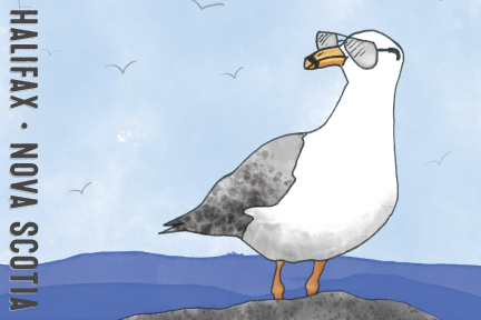 SeagullPostcardFront