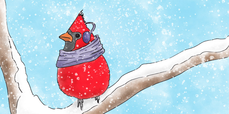 Cardinal-Illustration